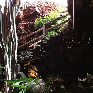 Die steile Treppe führt in die dunkle Grotte hinab. Unten ist es recht dunkel gehalten. Überall sind grüne Pflanzen gepflanzt.