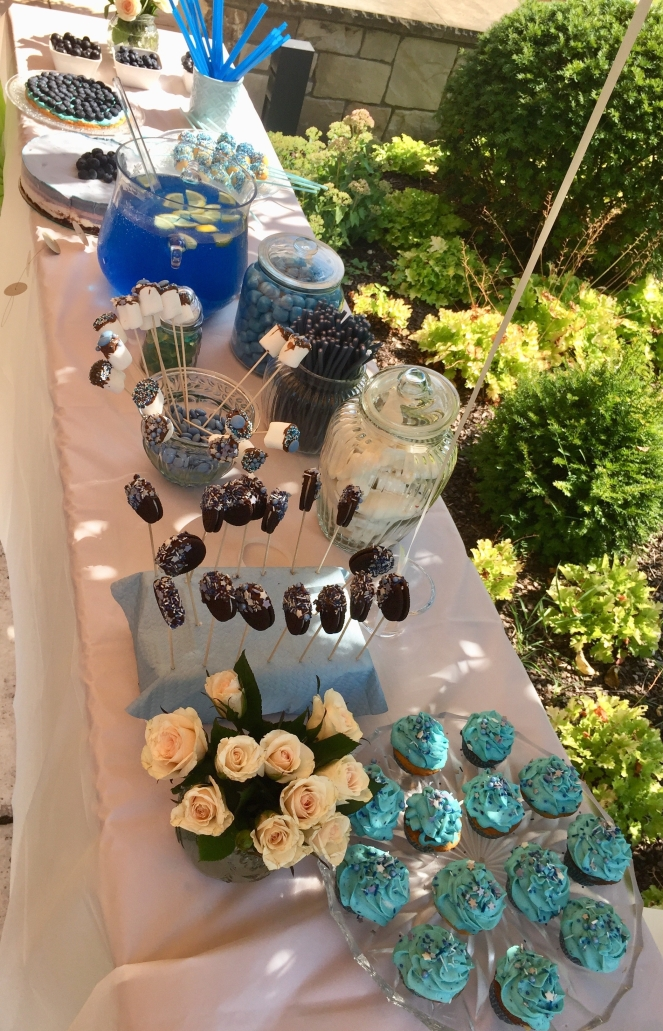 Babyshower-baby-boy-party-4