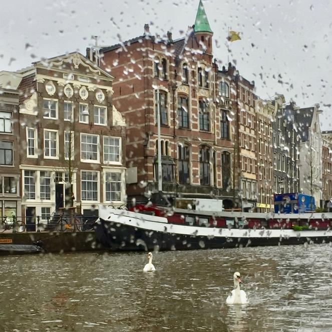 Das Bild zeigt wie Regen ans Fenster tropft. Hinter dem Fenster befindet sich Wasser mit zwei Schwänen und eine Häuserfront aus Amsterdam.