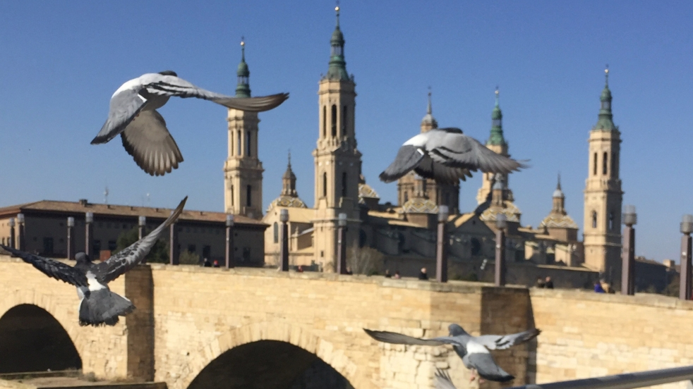Im Hintergrund ist die Kathedrale El Pilar aus Zaragoza und die bekannte Steinbrücke zu sehen. Durch das Bild fliegen vier Tauben. Der Himmel ist azurblau.