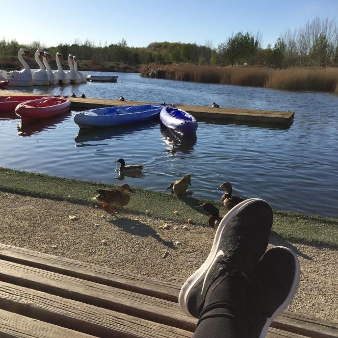 Das Bild ist von einer auf einer Bank sitzenden Person geschossen, die Schuhe sind gekreuzt im Bild. Der Ausblick fällt auf einen See. Im Vordergrund werden Enten gefüttert, im Hintergrund dümpeln Kajaks und Tretboote im Wasser.